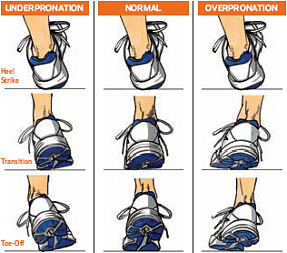 what to look for from heel strike to toe-off (left foot) : supinators