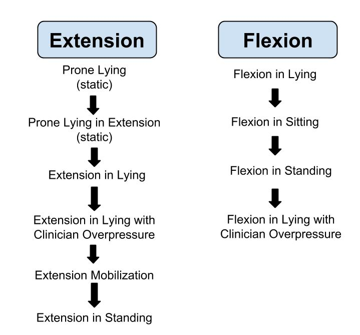 Extension & Flexion Progressions