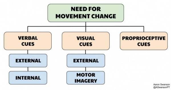 Knowing how to influence movement with cues starts with understanding the different types of cues
