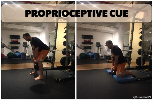Regressing the posture is another way to alter the afferent proprioceptive input.