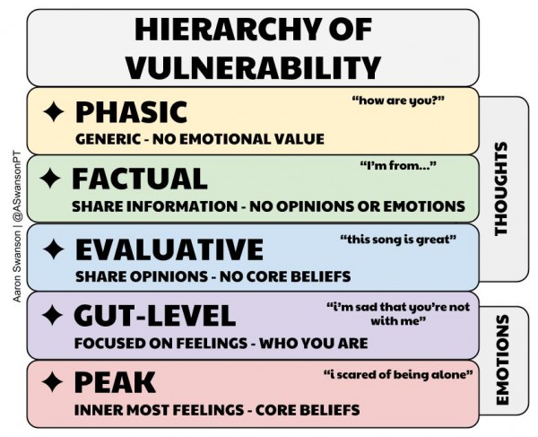hierarchy of vulnerability swanson